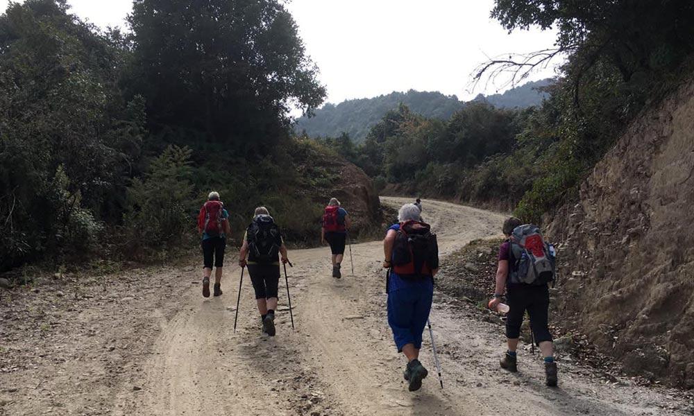 Walking through Shivapuri National Park