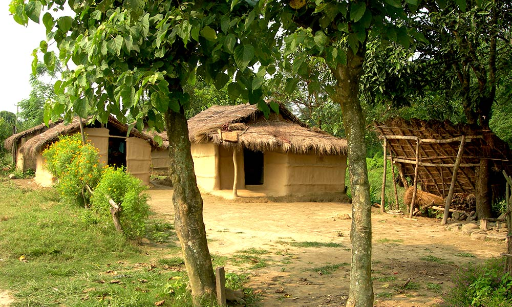 Typical Tharu House, Chitwan