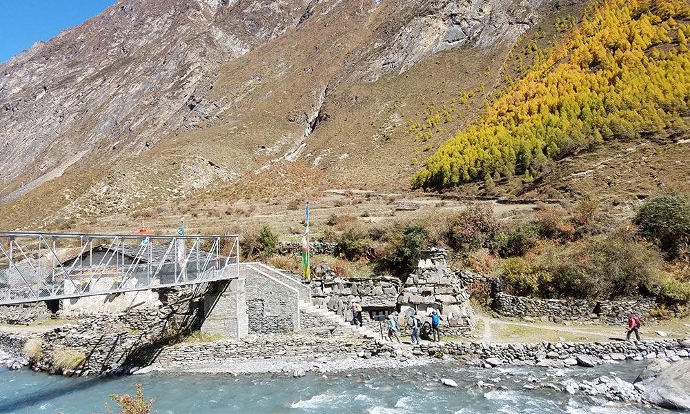 Budi Gandaki river and Alpine vegetation