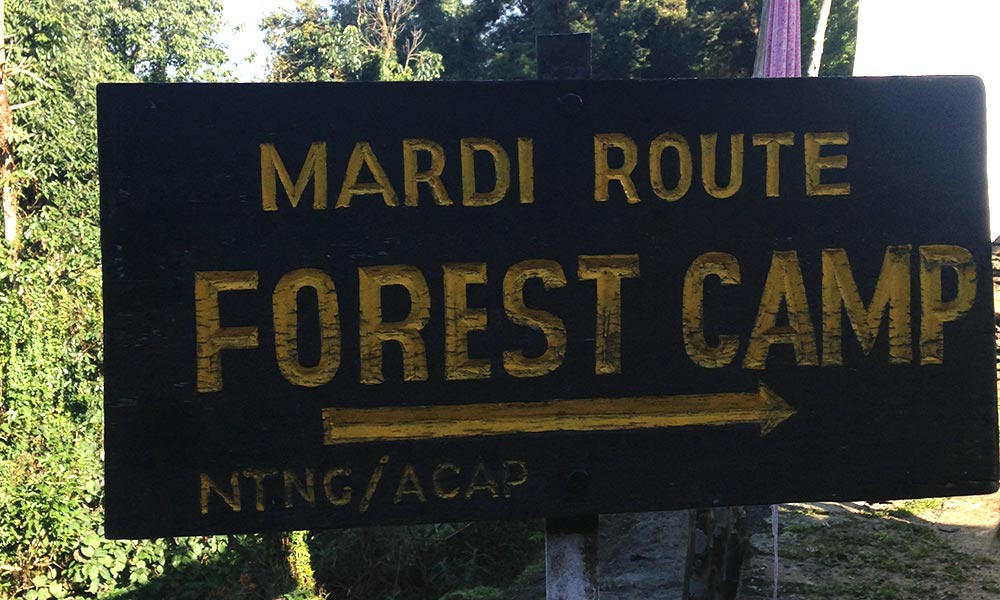 Forest Camp direction indicator