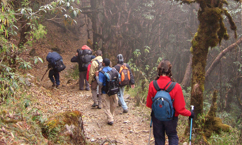 Trekking through bushes after crossing the pass