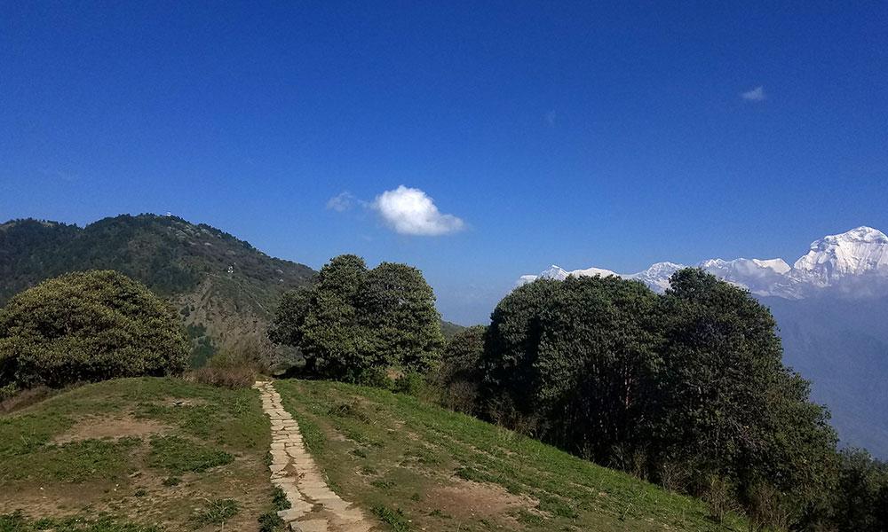 On the way to Tadapani