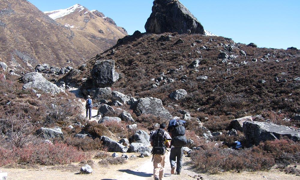 Trekkers and porters