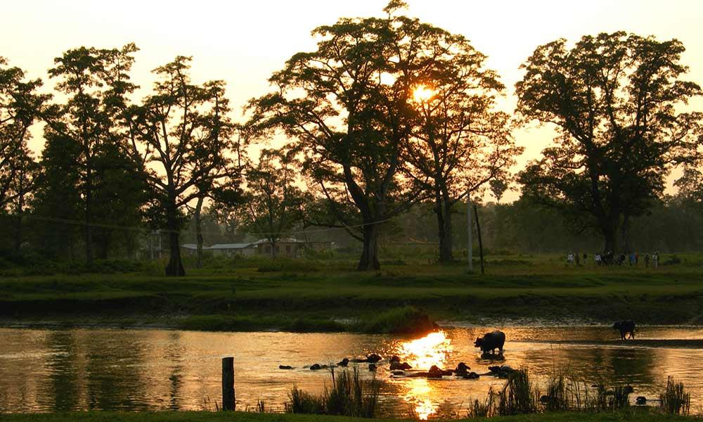 Chitwan National Park during Sunset