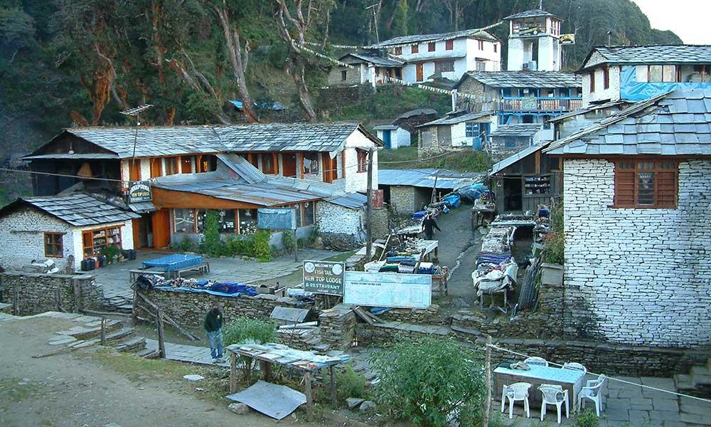 Lodges at Tadapani