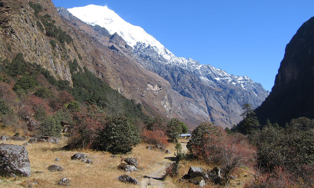 View of Langtang from Ghodatabela