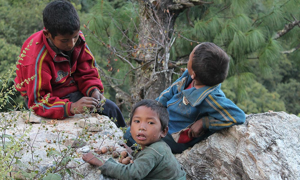 Local children with Walnuts
