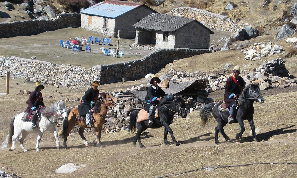 Local people with their horses