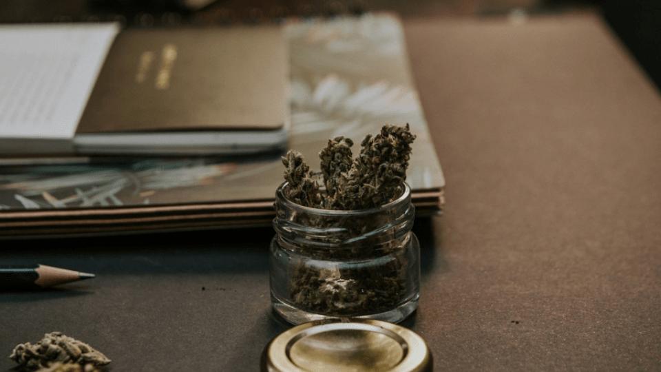 Forhandler af CBD-olie: Legalisering af medicinsk cannabis har endnu ikke afkriminaliseret hverken os eller vores produkter