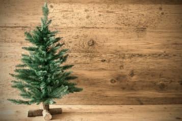 Hvilket juletræ er bedst for miljøet?