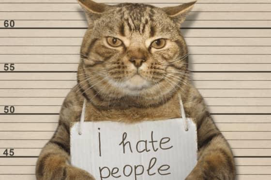 10 ting jeg hader!