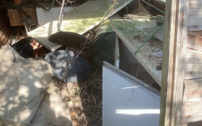 Green Waste Shed Dismantle & Removal