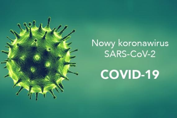 Anti-SARS-CoV-2 ELISA IgA, IgG tests