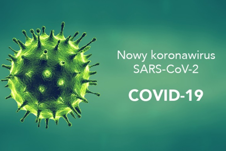 Anti-SARS-CoV-2 ELISA IgA, IgG tests