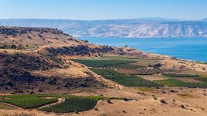Golan Heights Palestine