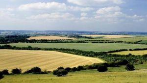English farmland