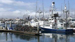 tuna fisheries