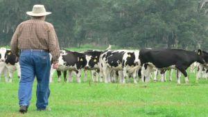 livestock farmer