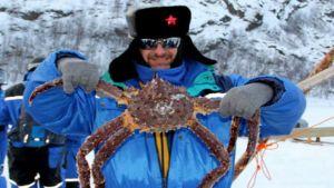 Russia crab