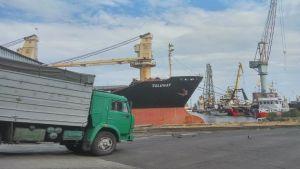 wheat cargo