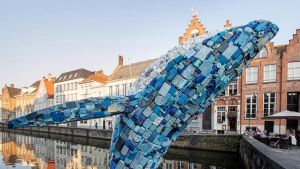 Bruges Whale