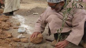 Drought-hit Morocco