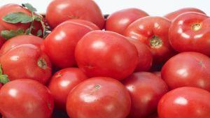 Turkish tomato trade