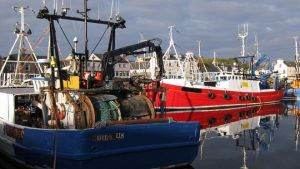 Scottish fisheries
