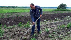 Belarus farm