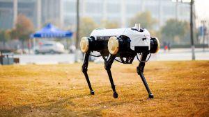 Jueying robot