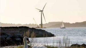 Norway electricity