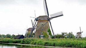 Netherlands export