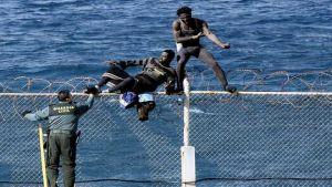 Spain immigrants
