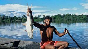 Brazil fisheries