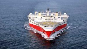 Falkland Oil & Gas