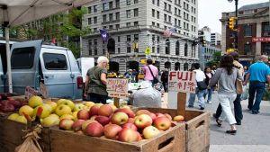 New York farmers market