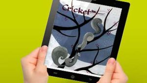 Cricket Media Group