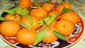 Morocco citrus