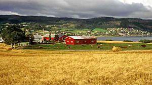 Norwegian farmers