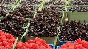 Canadian fresh fruit