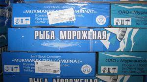 Murmansk fish factory