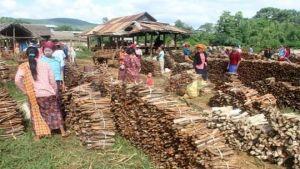 Myanmar wood