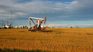 Penn West Petroleum