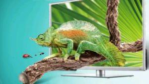 TCL Multimedia