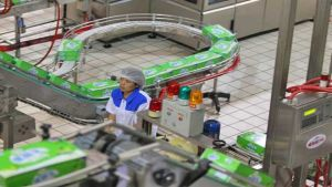 Yili Industrial Group