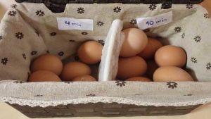 Estonia eggs