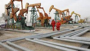 Australian Petroleum Production and Exploration Association (APPEA)