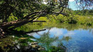 Cuba river