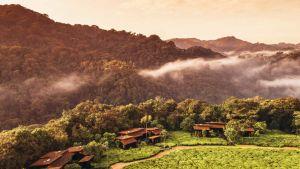 Rwanda nature