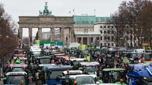 German farmers in Berlin